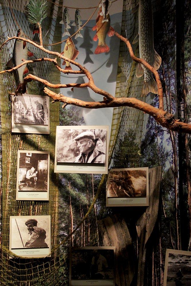 Экспозиция Музея К. Г. Паустовского, зал Лес