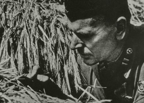 Изображение-превью Паустовский на войне